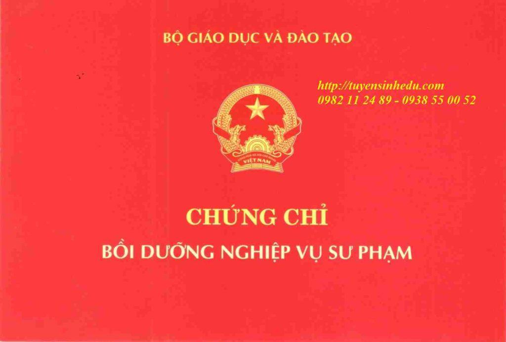 chung-chi-su-pham-giang-vien