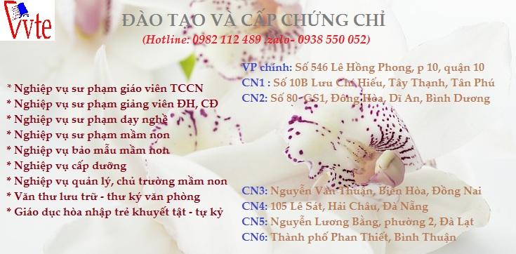 orchids-1209612_960_720